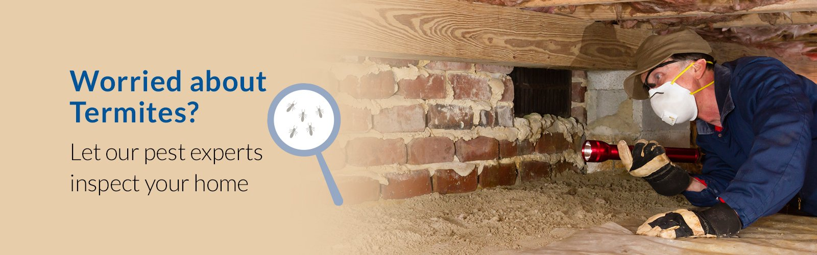 worried about termites? let our pest experts inspect your home